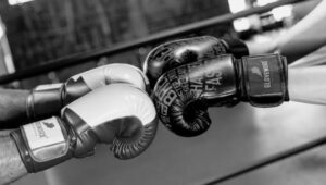 top rated boxing gloves