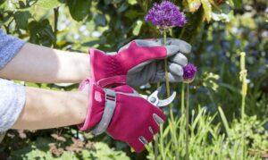 what is the best gardening gloves