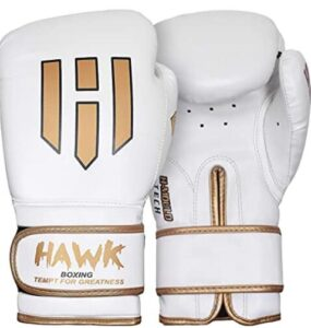 16 oz boxing gloves